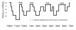 Understanding Sleep Stages and How Snoring Affects Them