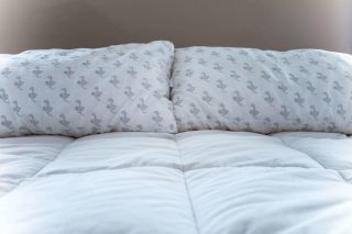 MyPillow Complaints: Read Before Buying