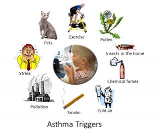 nine asthma triggers